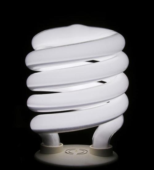 Rachel Carson And Pigtail Light Bulbs The Wayward Journey
